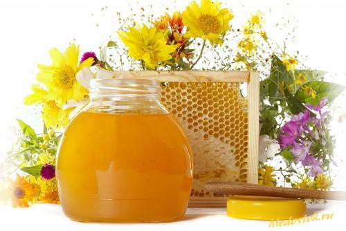 Мед и лечебные травы