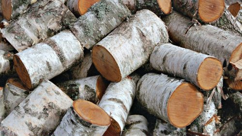 Березовые дрова