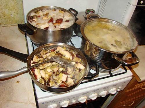 Необходимо соблюдать правила по переработке и хранению грибов