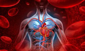 Об очистке крови от токсинов