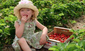 Причины и лечение отравления у ребенка