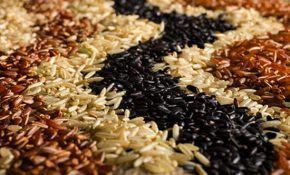 Об очищении кишечника при помощи риса