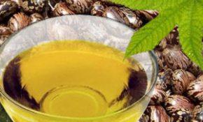 Способы чистки организма коньяком и касторовым маслом