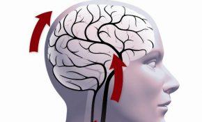 Симптомы, причины и лечение алкогольной энцефалопатии
